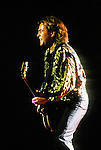 Various live photographs of the rock band, Foreigner