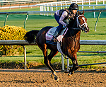 April 26, 2021: Moraz, trained by trainer Mike McCarthy, exercises in preparation for the Kentucky Oaks at Churchill Downs on April 26, 2021 in Louisville, Kentucky. Scott Serio/Eclipse Sportswire/CSM