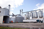 On an average day, 20 trucks fill up with 50,000 pounds each of non-genetically modified corn at Clarkson Grain's Cerro Gordo, Ill., processing plant. Clarkson Grain's clients are food processors. Food companies' move toward non-genetically modified ingredients has increased demand for the limited supply of non-GMO crops.<br /> Kristen Schmid for the New York Times