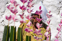 """A Salvadoran woman seen through palm branches with colorful flower blooms during the procession of the Flower & Palm Festival in Panchimalco, El Salvador, 8 May 2011. On the first Sunday of May, the small town of Panchimalco, lying close to San Salvador, celebrates its two patron saints with a spectacular festivity, known as """"Fiesta de las Flores y Palmas"""". The origin of this event comes from pre-Columbian Maya culture and used to commemorate the start of the rainy season. Women strip the palm branches and skewer flower blooms on them to create large colorful decoration. In the afternoon procession, lead by a male dance group performing a religious dance-drama inspired by the Spanish Reconquest, large altars adorned with flowers are slowly carried by women, dressed in typical costumes, through the steep streets of the town."""