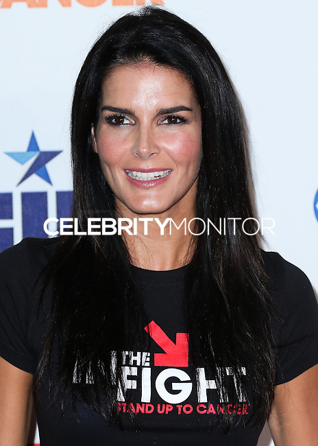 HOLLYWOOD, LOS ANGELES, CA, USA - SEPTEMBER 05: Angie Harmon arrives at the 4th Biennial Stand Up To Cancer held at Dolby Theatre on September 5, 2014 in Hollywood, Los Angeles, California, United States. (Photo by Xavier Collin/Celebrity Monitor)