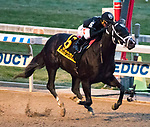 OZONE PARK, NEW YORK - DEC 2: , #6, ridden by Javier Castellano , wins the Cigar Mile Handicap, at Aqueduct Racetrack, on December2, 2017 in Ozone Park, New York. ( Photo by Dan Heary/Eclipse Sportswire/Getty Images)