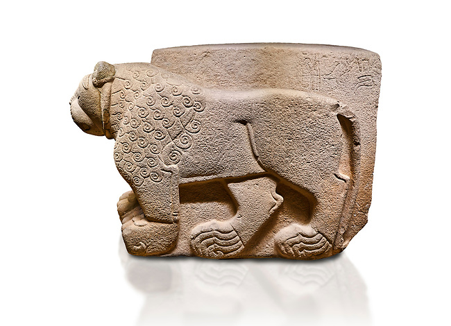 """Hittite relief sculpted stone panel. Lion. Aslantepe Gate Limestone, Aslantepe, Malatya, 1200-700 B.C. Anatolian Civilisations Museum, Ankara, Turkey.<br /> <br /> The lion on the left of the two lions at the gate of the palace. His head and his front part were processed as high embossing and his body as regular embossing. The signs behind the lion and over his tail read; """"Halposulupis, Mighty (?) King"""".<br /> <br /> Against a white background."""