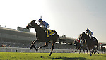 FLOTILLA, ridden by Christophe Lemaire and trained by Mikel Delzangles, wins the Breeders' Cup Juvenile Fillies Turf at Santa Anita Park in Arcadia, California on November 2, 2012.