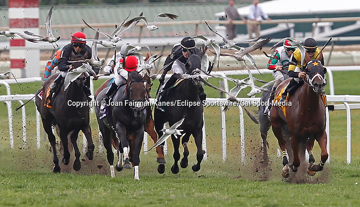 September 1, 2014: #4 Quality Lass (right), John Bisono up, wins the Turf Amazon Handicap at Parx Racing in Bensalem, PA. Trainer is Guadalupe Preciado; owner is West Point Thoroughbreds. ©Joan Fairman Kanes/ESW/CSM