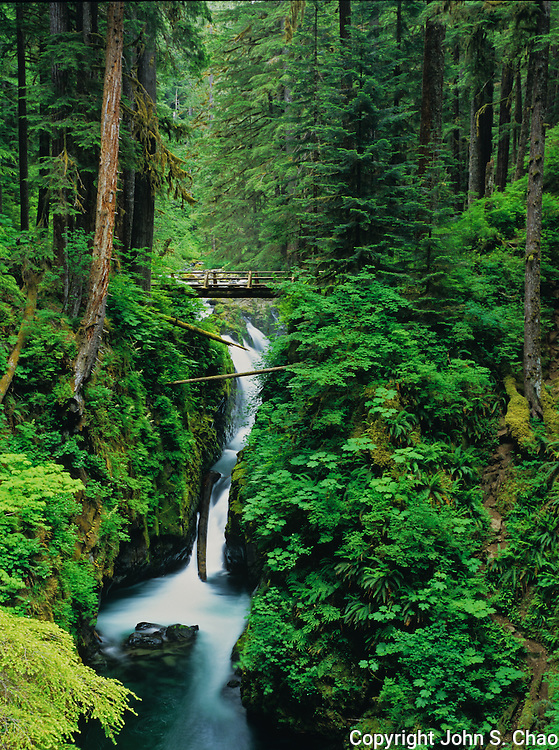 A log bridge spans Sol Duc River and Falls in verdant Olympic National Park, Washington State