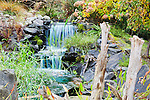 Man Made Waterfall and Stream in Back Yard.  Private garden professionally landscaped.