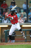 Billings Mustangs Quincy McAfee (19) at bat during a Pioneer League game against the Grand Junction Rockies at Dehler Park on August 14, 2019 in Billings, Montana. Grand Junction defeated Billings 8-5. (Zachary Lucy/Four Seam Images)