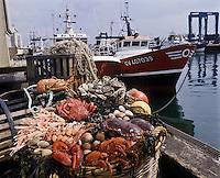 Europe/France/Bretagne/29/Finistère: Plateau de fruits de mer sur le port du Guilvinnec: Huitres , tourteau, araignées