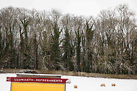 Cardiff, Wales, UK. 1st February 2019. Sheep graze a snowy field near St Fagans National Museum of History in Cardiff as freezing temperatures strike much of the UK during a winter cold snap.