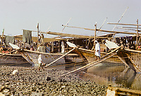 Kuwait October 1966.  Dhows on the Sief waterfront in Late Afternoon.