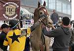 3 October 2009: Jockey David Flores gives a pat to AWESOME GEM after winning the 73rd running of the G2 Hawthorne Gold Cup at Hawthorne Race Course in Cicero/Stickney, Illinois.