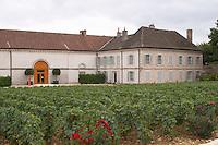 vineyard  the chateau dom m picard chateau de ch-m chassagne-montrachet cote de beaune burgundy france