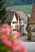 Europe/France/Alsace/68/Haut-Rhin/ Westhalten:  Maisons anciennes de vignerons