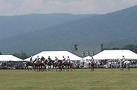 polo horse play