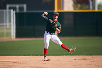 Alex Ulloa during the Under Armour All-America Tournament powered by Baseball Factory on January 18, 2020 at Sloan Park in Mesa, Arizona.  (Zachary Lucy/Four Seam Images)