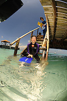 14 August 2009: Skin Diver Josh Wolfstein sits on the entry steps after a snorkeling dive at Captain Don's Reef in Hato, Bonaire. Mandatory Photo Credit: Ed Wolfstein Photo