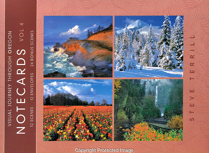 NOTECARD VOLUME 4 - Price 14.99$. <br /> Cover. Twelve A-7 (5 x 7) cards and envelopes per package Sturdy folio style package with secured flap. Cards printed on recylced content, 10 pt. C1S, cast coated paper. Each box is shrink-wrapped to secure and protect its contents
