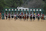 """The 3rd race at Oaklawn featured 11 horses as Calvin Borel is in the center riding """"Atticus The Man"""" going for his 5000th win. Feb.18, 2013 - Hot Springs, Arkansas, U.S - (Credit Image: © Justin Manning/Eclipse/ZUMAPRESS.com)The 48th Running of the Southwest Stakes. Feb.18, 2013 - Hot Springs, Arkansas, U.S - (Credit Image: © Justin Manning/Eclipse/ZUMAPRESS.com)"""