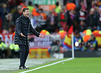 Atletico Madrid manager Diego Simeone shouts instructions to his team from the technical area<br /> <br /> Photographer Rich Linley/CameraSport<br /> <br /> UEFA Champions League Round of 16 Second Leg - Liverpool v Atletico Madrid - Wednesday 11th March 2020 - Anfield - Liverpool<br />  <br /> World Copyright © 2020 CameraSport. All rights reserved. 43 Linden Ave. Countesthorpe. Leicester. England. LE8 5PG - Tel: +44 (0) 116 277 4147 - admin@camerasport.com - www.camerasport.com