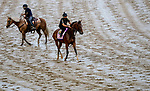 September 2, 2020: Gamine exercises as horses prepare for the 2020 Kentucky Derby and Kentucky Oaks at Churchill Downs in Louisville, Kentucky. The race is being run without fans due to the coronavirus pandemic that has gripped the world and nation for much of the year. Scott Serio/Eclipse Sportswire/CSM