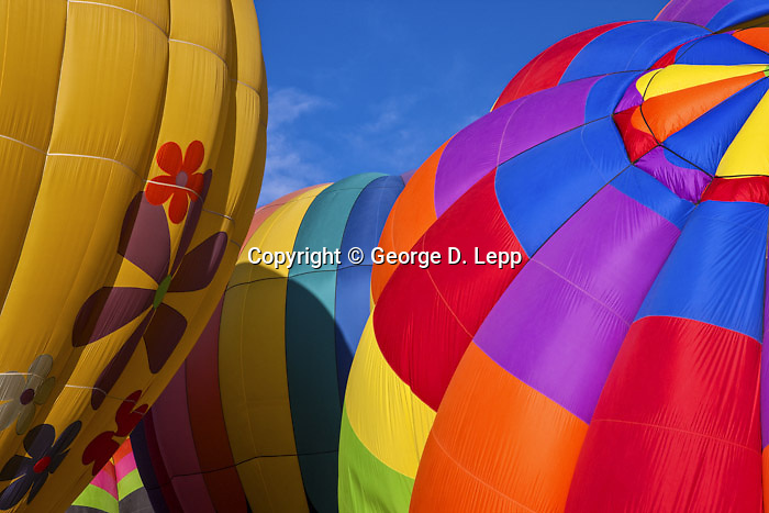 Details of hot air balloons at the Labor Day Balloon Clasic 2008.Sent to Canon 2/2009 for Print Masters images