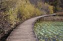 Wooden board walk at Plitvice Lakes National Park, Croatia. November.