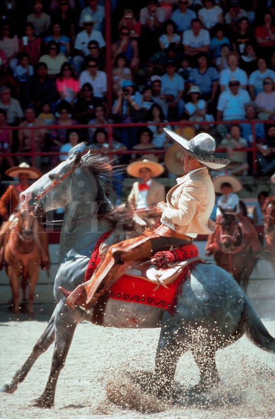 A Mexican cowboy (gaucho) on horseback swings at the Charros Rodeo Fiesta Event. San Antonio, Texas.