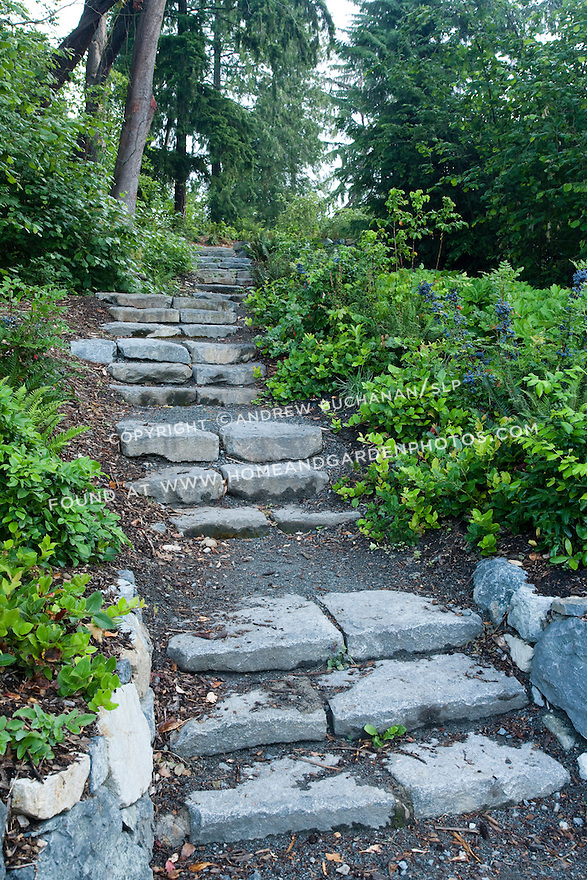 Stone steps lead through the Cascadia Garden at the Pacific Connections Garden, Washington Park Arboretum.