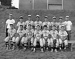 Bethel Park PA:  Colonial Taxi Pony League Baseball Team - 1966.  Team members that I remember are; Mike Stewart, Jim Beck, (?), (?), Carl Long, (?), Rick Valentine, Rick Fisher, Mark Jaworski, Craig Balmford, Sandy Glenn, Bobby Lester,  Barton. Coaches, Mr. Glenn and Mr. Jim Hannigan
