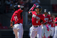 Isan Diaz (6) of the Carolina Mudcats bashes forearms with teammate Luis Aviles (11) after hitting a 2-run home run against the Winston-Salem Dash at Five County Stadium on May 14, 2017 in Zebulon, North Carolina.  The Mudcats walked-off the Dash 11-10.  (Brian Westerholt/Four Seam Images)