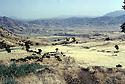 Iraq 1985  In Lolan district, empty land , no more villages around only peshmergas patrolling during the armed Struggle  Irak  1985  Vue sur le Lolan, terre avec villages rasés sans habitants pendant la lutte armée.