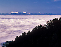 View of Willamette Valley and Three Sisters Mountains with fog.  As seen from Mary's Peak, Oregon.