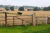UK, England, Yorkshire.  Yorkshire Farmland after Autumn Harvest.