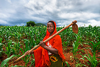 In Tanzania women like Helena Maroda have joined co-ops to learn the skills of building their business from kitchen garden to profitable business. Helena works in a Tanzanian cornfield that serves as a demonstration plot to teach others how to grow corn more successfully. Eight other women collectively work the roughly eight acres of land.