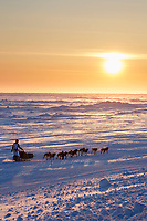 Matt Failor runs on the Bering Sea trail heading toward the finish at Nome during sunset on Wednesday March 14th during the 2018 Iditarod Sled Dog Race.  <br /> <br /> Photo by Jeff Schultz/SchultzPhoto.com  (C) 2018  ALL RIGHTS RESERVED