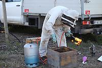 A beekeeper cleans an American foulbrood-infested hive with a flame.///Un apiculteur nettoie une ruche infestée de loque américaine à la flamme.