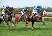 William Entenmann Memorial Novice Stakes - Gustavian