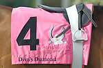 April 10, 2015: #4 Diva's Diamond silks before the running of the Apple Blossom Handicap at Oaklawn Park in Hot Springs, AR. Justin Manning/ESW/CSM