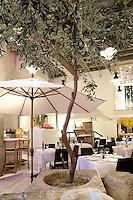 olive tree inside the restaurant Milos Restaurant New York City