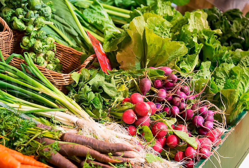 Fresh vegetables at a farm market.