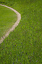 A curving gravel path through long meadow grass, Rousham House and Garden.