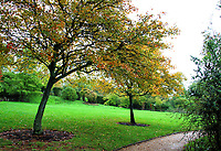 Autumn Colours in gardens at Wakehurst Place and Standen House and Gardens around Crawley, Sussex on October 7th and 8th 2020<br /> <br /> Photo by Keith Mayhew