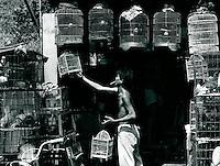 Vogelhändler in Saigon, Vietnam 1991