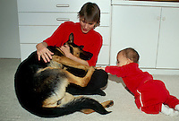 """Mom, baby and the dog play together giving everyone a chance to get a """"feel"""" for each other"""