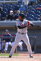Great Lakes Loons 2011