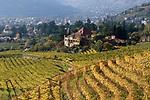 Italien, Suedtirol, Meran: Weingut oberhalb Merans | Italy, South Tyrol, Alto Adige, Merano: Wine-Growing Estate above Merano