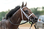 09-05-20 Woodward Saratoga