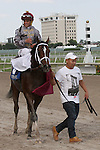January 09, 2016: #3 Mshawish (KY)  with jockey Javier Castellano on board wins the Hal's Hope Stakes G3 at Gulfstream Park in Hallandale Beach, FL.  Liz Lamont/ESW/CSM