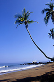 Marenco, Costa Rica. Cruise ship with a tropical beach paradise with leaning palm tree.